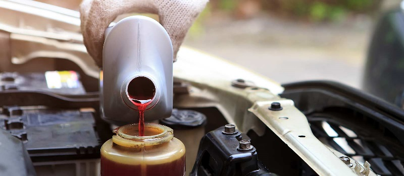 Power Steering Fluid Is Poured Into a Vehicle